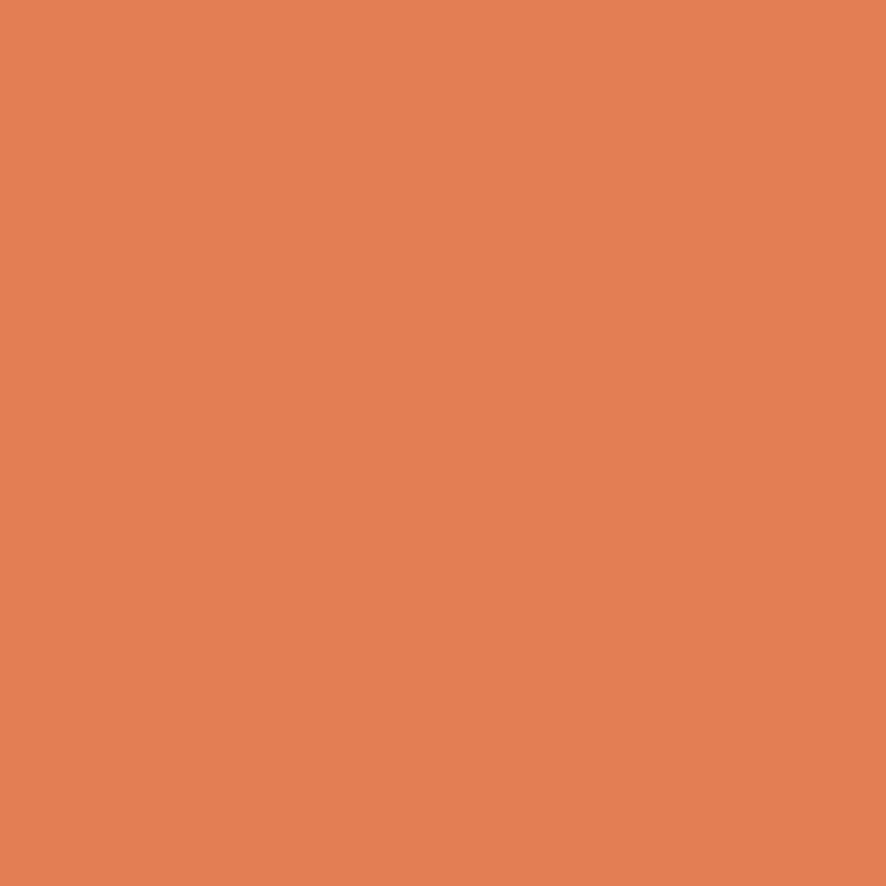 Art Gallery Pure Elements Dried Carrot | PE-457